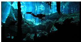 Sumérgete en los cenotes de Quintana Roo