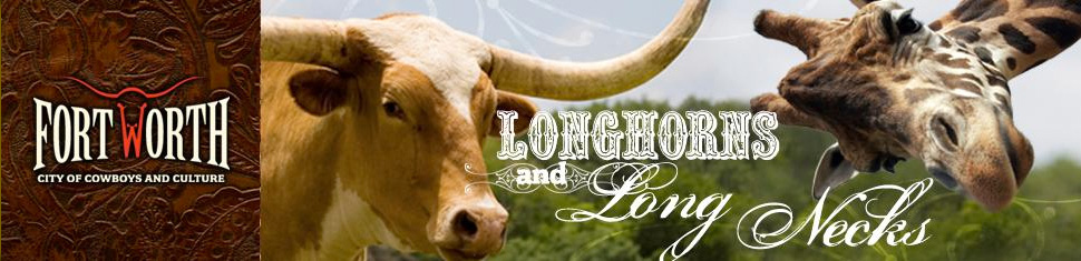 Fort Worth LongHorns Long Necks